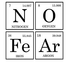 No Fear Elements Periodic Table by raineOn