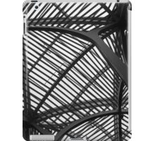 Steel Canopy iPad Case/Skin