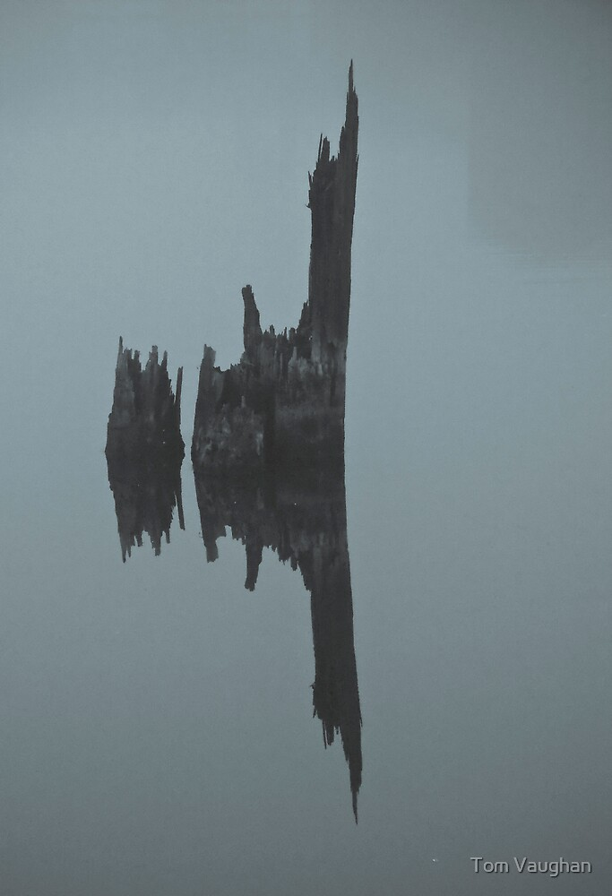 Lake Union Silhouette #2 by Tom Vaughan
