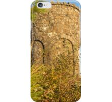 Mount Battie iPhone Case/Skin