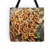 Turkey Tails Tote Bag