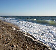 Herring Cove Beach by Anne Scantlebury
