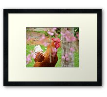 There's  Girls, There's Women And Then There's Ladies -  Rooster - NZ Framed Print