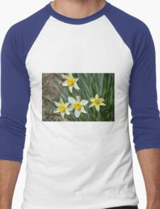 Daffodils Men's Baseball ¾ T-Shirt