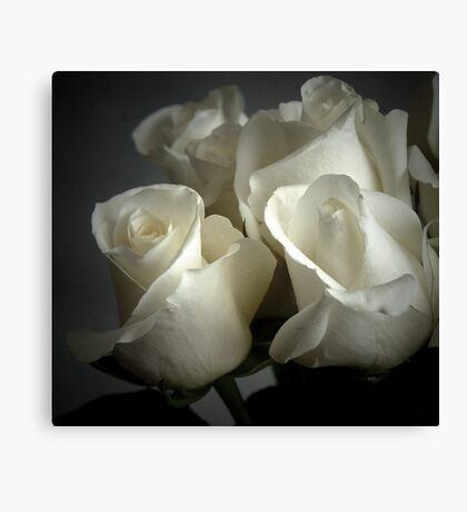 WHITE PAPER ROSES Canvas Print