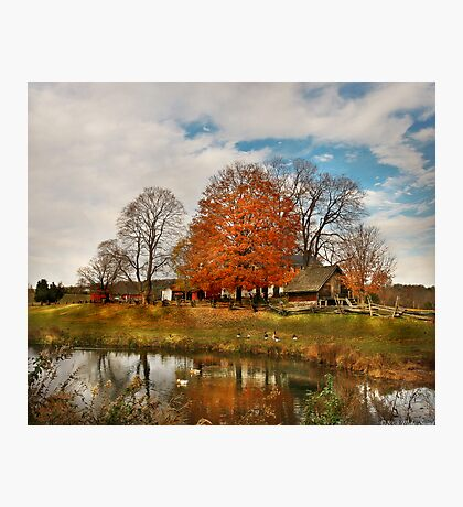 A visit to the farm Photographic Print
