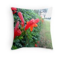Hedge Master Throw Pillow