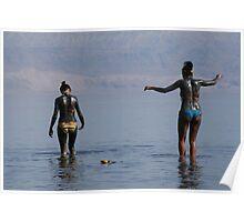 Dead Sea mud Poster
