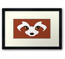 Pabu - Legend of Korra Framed Print