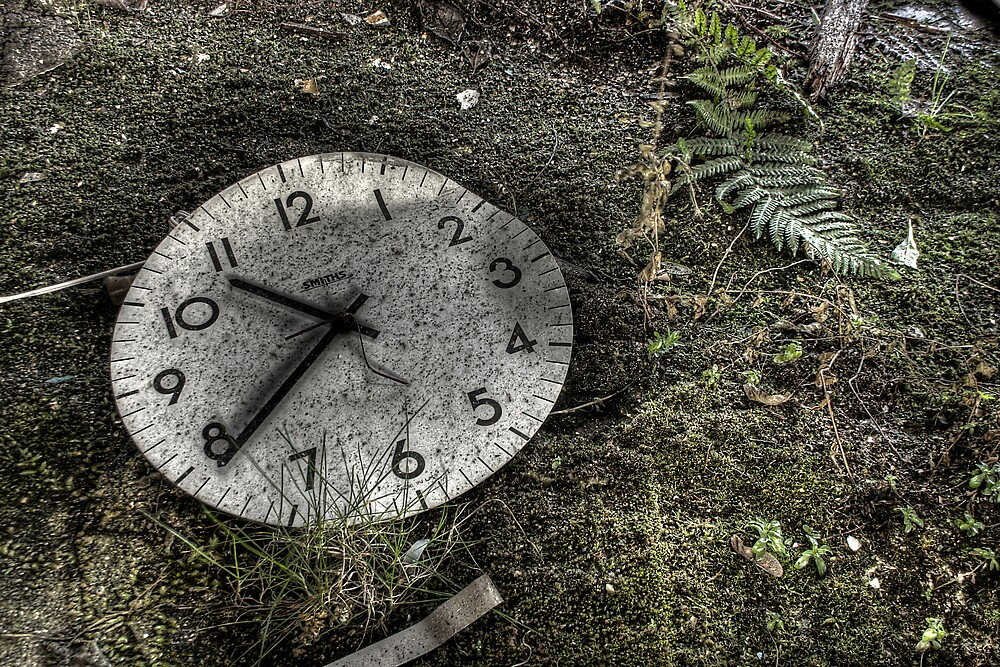 Time for nature by Richard Shepherd