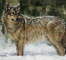 Snowy Wolf by Margaret Stockdale