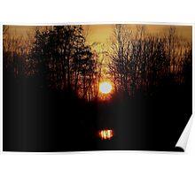 Woodland Sunset Poster