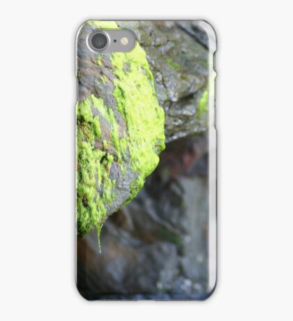 Moss on the Rocks iPhone Case/Skin