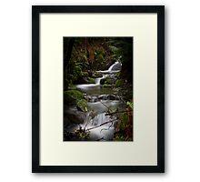 Silver Falls Creek Framed Print