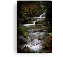 Silver Falls Creek Canvas Print