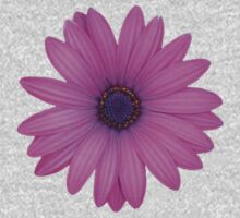 Pink African Daisy Isolated on A Black Background Kids Clothes