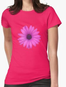 Pink African Daisy Isolated on A Black Background Womens Fitted T-Shirt