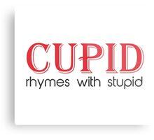 Cupid Rhymes with Stupid Metal Print