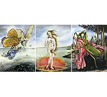 Venus on a Flytrap [full triptych] Photographic Print