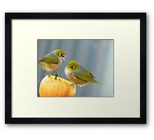 Hey You.. I Am Definitely Not Sharing!!  - Silver-Eye - NZ Framed Print
