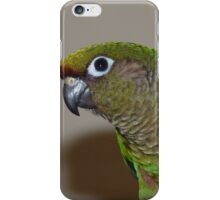 Maroon-Bellied Conure - iPhone Case - NZ iPhone Case/Skin