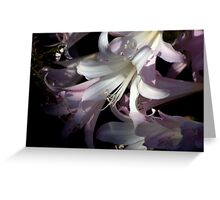 precious flower  Greeting Card