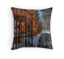 A Quiet Moment Throw Pillow