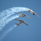 Southern Knights - Looping by muz2142