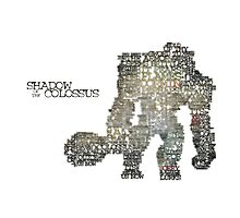 Shadow of the Colossus  Photographic Print
