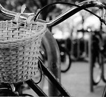 """Basket"" by Clayton  Turner"