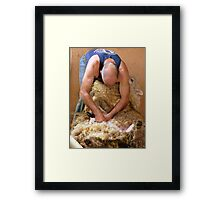 Thank Goodness He Wore Deodorant Today!! - Sheep Shearing - Southland New Zealand Framed Print