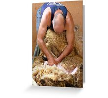 Thank Goodness He Wore Deodorant Today!! - Sheep Shearing - Southland New Zealand Greeting Card