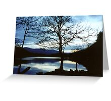 Twilight Silhouettes Greeting Card