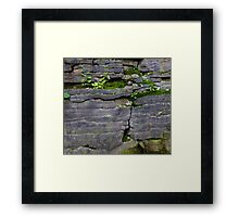 HDR Composite - Moss in the Cliff Side Framed Print