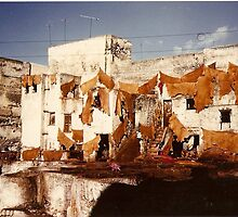 Another shot of the Tannery in Fez by Alina Holgate
