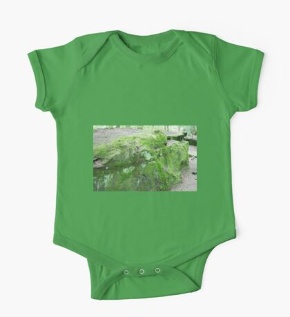 HDR Composite - Mossy Rock One Piece - Short Sleeve