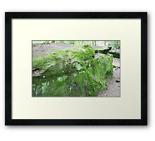 HDR Composite - Mossy Rock Framed Print