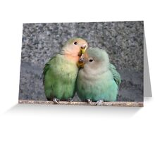 Excuse Me...This Is A Private Moment - Love Birds - NZ Greeting Card