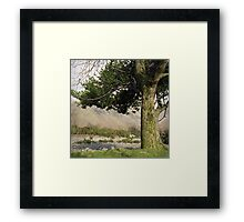 Holly Tree, Wasdale Framed Print