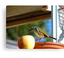 I Wasn't Aware That Apples Came With Worms.. Bonus!! - Silvier-Eye - NZ Canvas Print