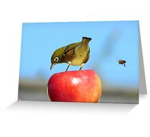 Yikes!!! He's Making A BEEline for My BEEhind! - Silver-Eye - NZ Greeting Card
