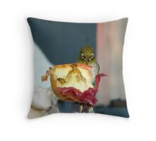 Aww..Wee!!! Your'e An Unwelcome Guest On My Apple! - Silver-Eye - NZ Throw Pillow