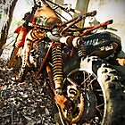 Dirt Bike by Roland de Haas