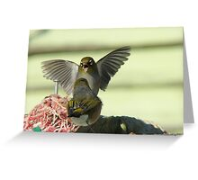 I'm Telling You..That Worm Was At Least This Big!! - Silver-Eyes - NZ Greeting Card