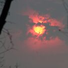 Bushfire by Larry149