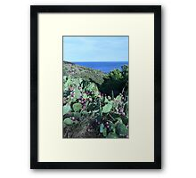 Paullilles France  Framed Print