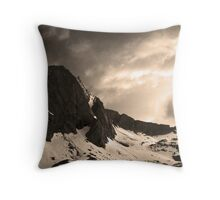 A harsher kind of elegance Throw Pillow