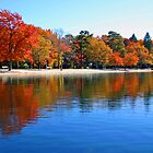 Fall at the Lake by patti4glory