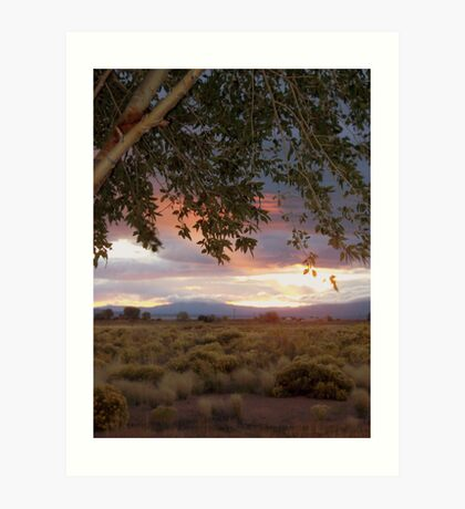 San Luis Valley at dawn Art Print