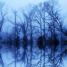 Foggy Reflections by Angi Baker